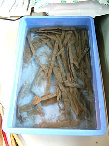 写真2  洗浄作業の行われていたトレー