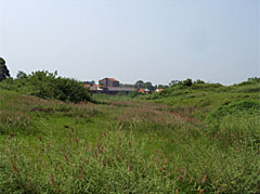写真11 南城壁の空隙