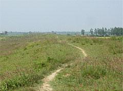 写真14 南城壁(東から西に向かって)